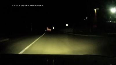 Говорят не повезет, если черный кот дорогу перейдет