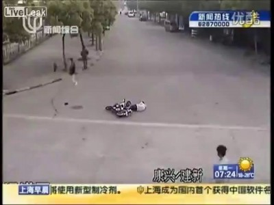 Собака сбила скутериста