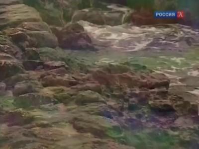 Неизвестные страницы Крымской войны