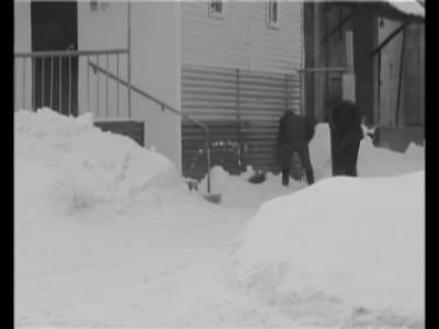Снегосеки