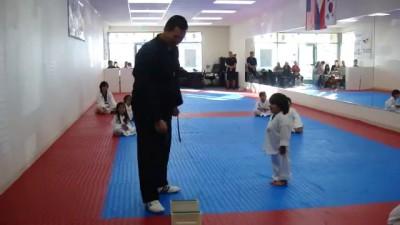 Little Boy Trying To Break Board In Taekwondo
