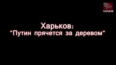 """Харьков: """"Путин прячется за деревом"""""""