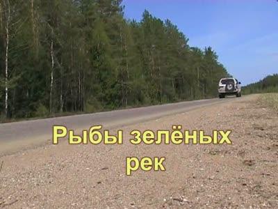 Форель Подмосковья.