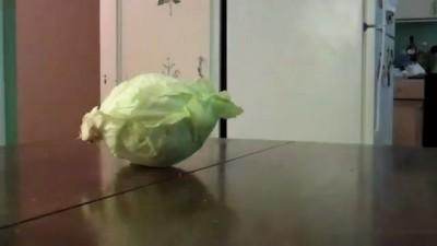 Стырил капусту