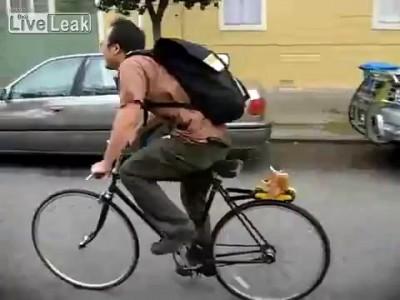 Устройство для велосипеда