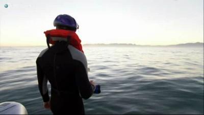 В 4-х метрах от акулы