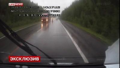 10 пассажиров  газели чудом уцелели в ДТП на Урале