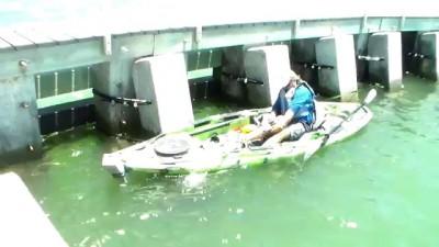 Вот это рыба! Cape Coral Man lands Largest Kayak Bottom Fish Ever!