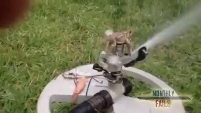 Пулеметчик