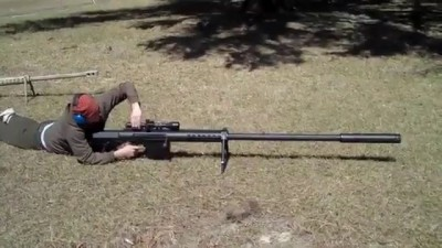 Что за винтовка?