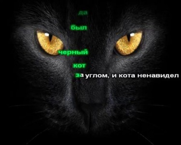 Браславский Игорь - Черный кот (караоке) оригинал + бэк