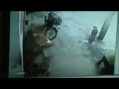 Корова, защитила девочку в Индии.