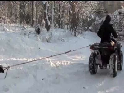 Экстримальный сноуборд