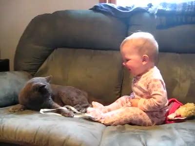 Кот и ребенок играют