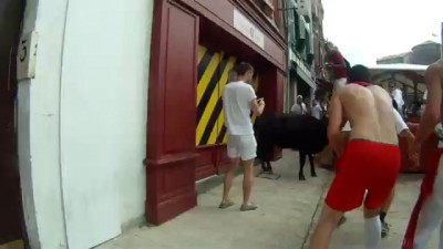 Fêtes de Bayonne 2014 And the winner is, vache 1 selfie 0