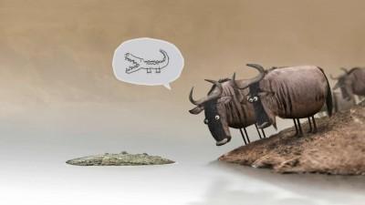 Тупые буйволы