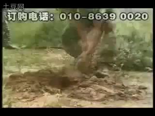 Великая китайская саперная лопата