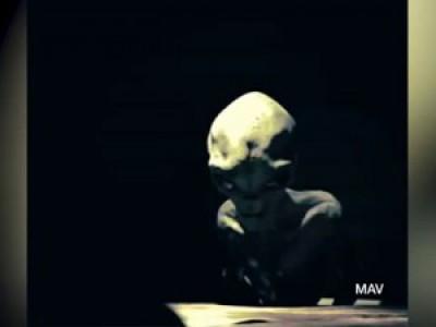 Интервью с потомком человека или пришельцем. Правда или фейк?