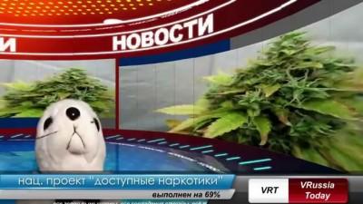 Путин и наркотики