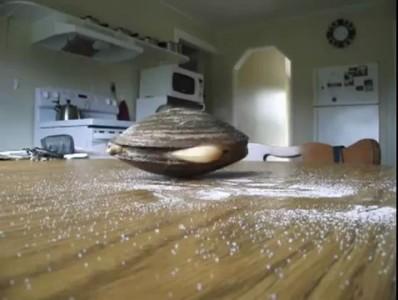 Моллюск и соль