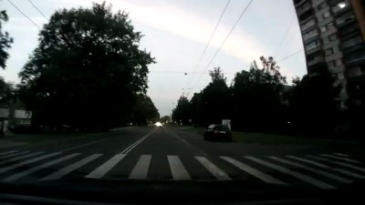 Кошка - правильный пешеход !