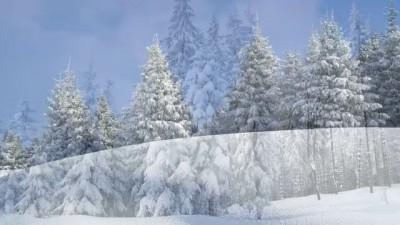 ♥ ♫ Потолок ледяной | У леса на опушке | Эдуард Хиль ЗИМА (с субтитрами)