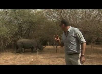Носорог гоняет съёмочную группу))) Rhino attacks filming crew!!!