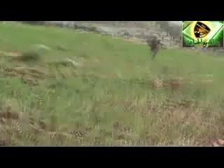 В сирии сбит вертолет с флагом России