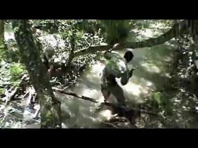 ICF-про Вьетнам
