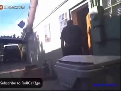 Полиция застрелила собак...