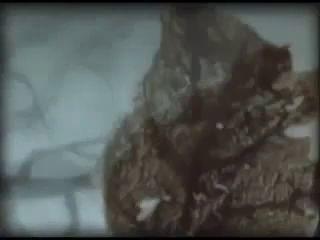 Трейлер Ежик в тумане Версия 2010