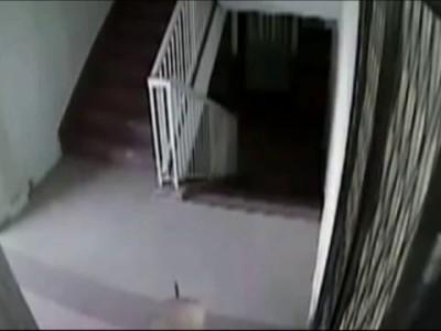 Сумасшедшая соседка