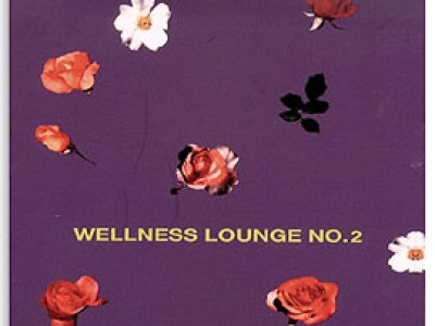VA - Wellness Lounge No 2 (2003)