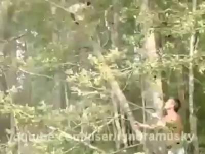 Как мужик кота спасал