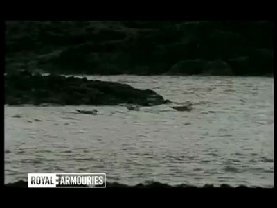 Royal Armouries wildfowling film clip