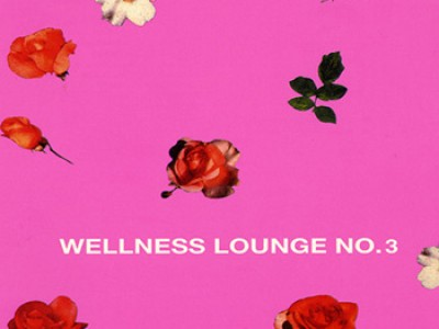 Wellness Lounge no 3 (2004)_VBR