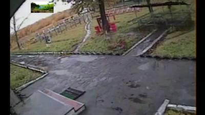 Нашол только одно видео где медведя мочит из пистолета, а именно из ПМ.