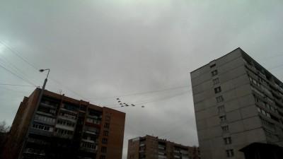 Полёт боевой авиации