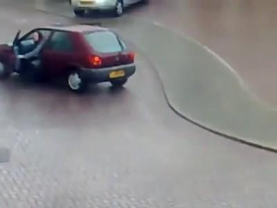 Водятлы из Европы