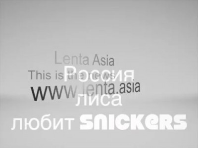 Россия лиса любит snickers