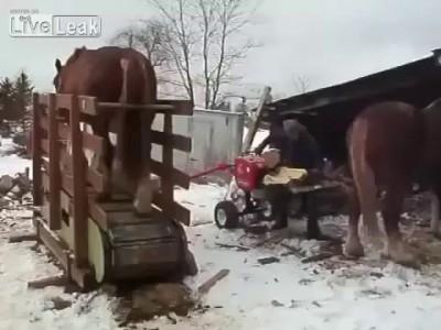 Лошадинная сила