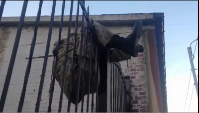 Пьяный херой на заборе