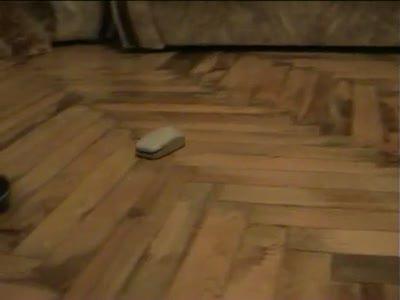 Computer mouse with servo / Компьютерная мышка с мотором