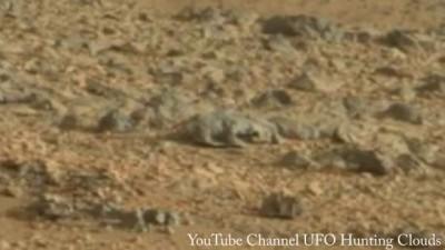 """На снимок NASA с Марса попала """"инопланетная ящерица"""""""