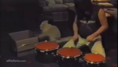 Котэ барабанщика