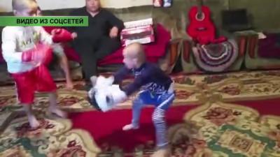Видео с маленькими боксерами покоряет Казнет