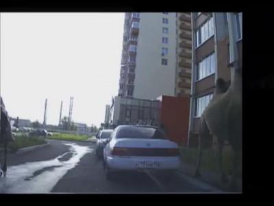 Dsuek верблюдов в Челябинске