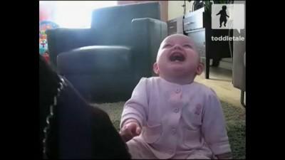 Маленькая девочка истерически смеется над собакой