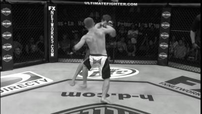 8 лучших нокаутов ногой в истории UFC по версии Джо Рогана