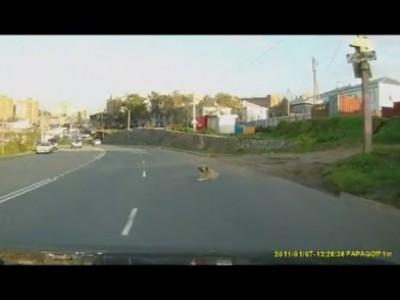 Хамство кавказцев на дороге